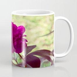 DC Flowers Coffee Mug