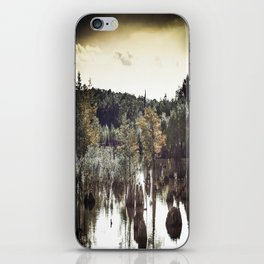 Dead Lakes Grunge Style iPhone Skin