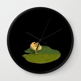 Nymphaea Lutea Mary Delany British Botanical Floral Art Paper Flowers Black Background Wall Clock