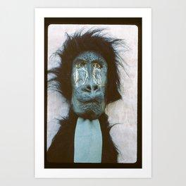 Blue Baboon Art Print