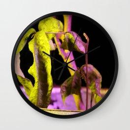 Yellow longan tree Wall Clock