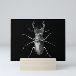 Beetle Scarab Mini Art Print