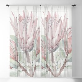 Protea #society6 #buyart Sheer Curtain