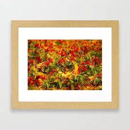 Caliente! Framed Art Print
