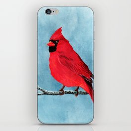 red looks good on me iPhone Skin