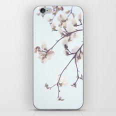 Magnolias iPhone & iPod Skin