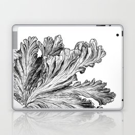 Charybdis Laptop & iPad Skin