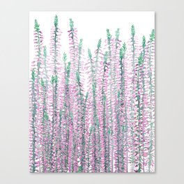 Heather Calluna Canvas Print