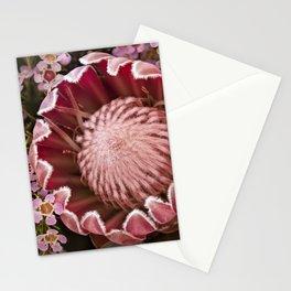 Macro Protea Stationery Cards