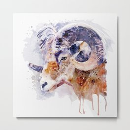 Bighorn Sheep watercolor portrait Metal Print