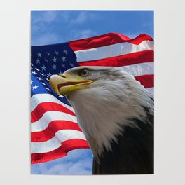 American Flag and Bald Eagle Poster