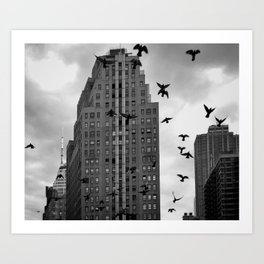 For the Birds Art Print
