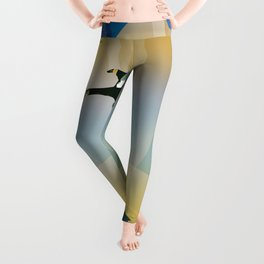 NASA Visions of the Future - Experience the Gravity of HD 40307g Leggings