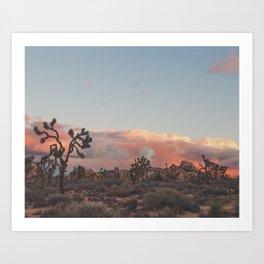 Joshua Tree Sunset Photograph. No. 2 Art Print
