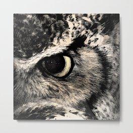 Eye Of The Owl Metal Print