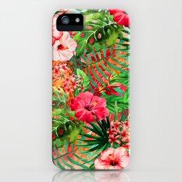 Paraiso iPhone Case