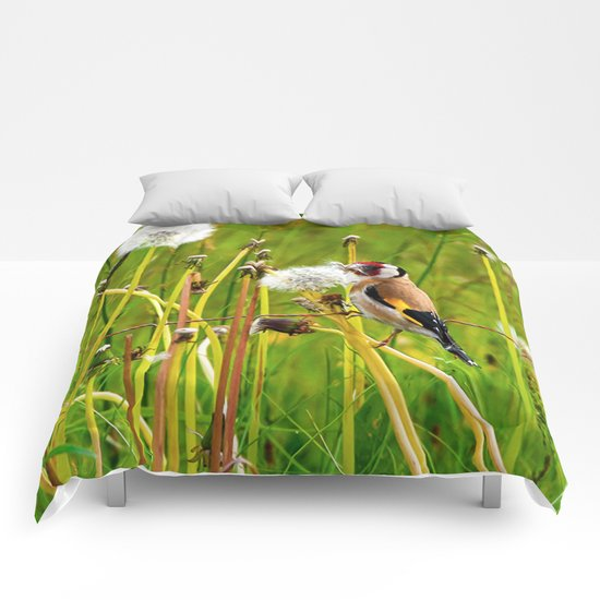 Europan goldfinch in late Spring Comforters