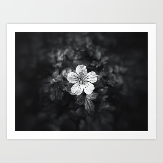 Minimalistic black and white flower petal Art Print