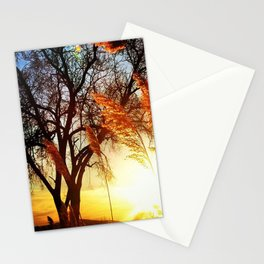 Marshy Sunset Stationery Cards