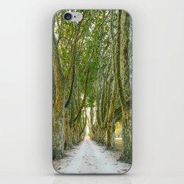 Leafy Driveway iPhone Skin