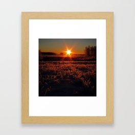 Rise Up Starman Framed Art Print