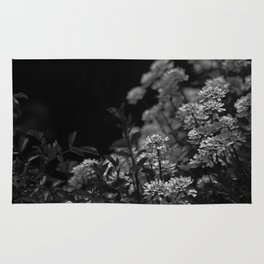 Edelweiss by Moonlight Rug