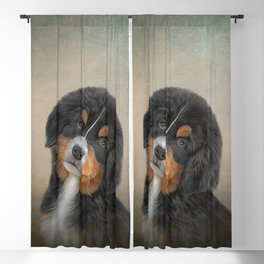 Drawing puppy Bernese Mountain Dog 2 Blackout Curtain