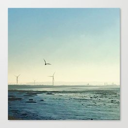 Environment Canvas Print