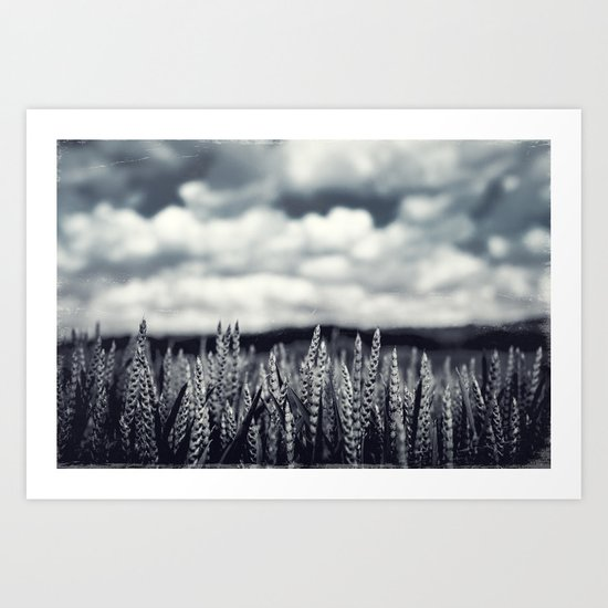 Our Daily Bread - Crop Art Print
