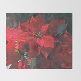 Poinsettia - Euphorbia pulcherrima Throw Blanket
