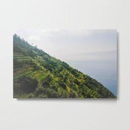 Wine mountains Metal Print