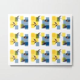 Chasoffart-Swallows-2p-1 Metal Print