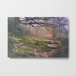 Cumbria Pathway Metal Print