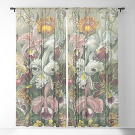 Vintage Orchid Floral Sheer Curtain