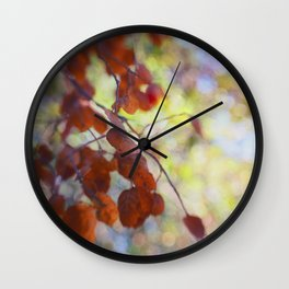 Dreaming on a Summer Day abstract nature photo Wall Clock