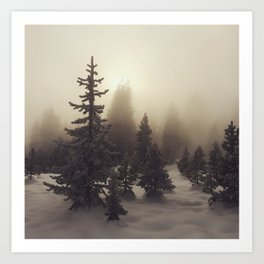 Sunlight, Frost and Steam Art Print