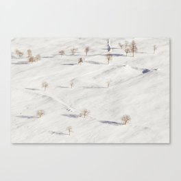 White Winterscapes II Canvas Print