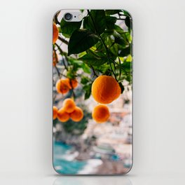 Amalfi Coast Oranges iPhone Skin