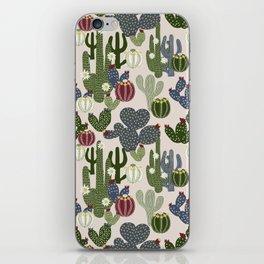 Desert Vibrance iPhone Skin