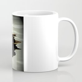 Pacific Black Duck (Anas superciliosa) Coffee Mug