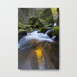 McCord Creek Metal Print