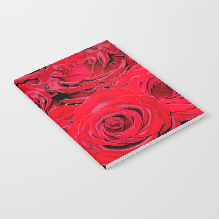 Bed of red roses- Photography pattern of red rose Notebook