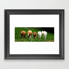 Cows on the field Framed Art Print