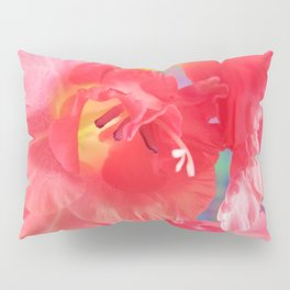 Pink Gladiolus Scape Pillow Sham