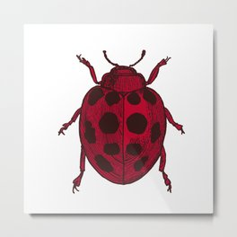 Red Lady Bug - white background Metal Print
