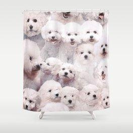 Bichons Shower Curtain