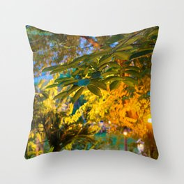 Siem Reap Trees Throw Pillow