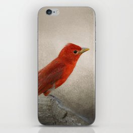 Song of the Summer Tanager 2 - Birds iPhone Skin
