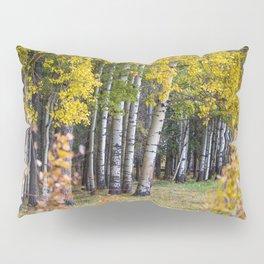 Poplar Pillow Sham