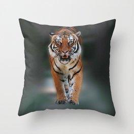 save the tiger Throw Pillow